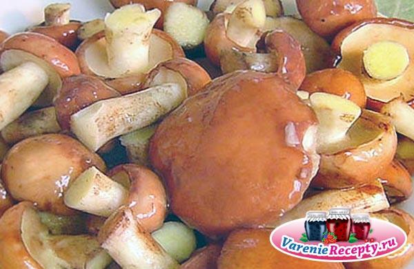 Консервирование грибов валуи на зиму рецепты
