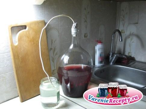 Вино из слив своими руками